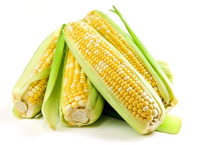 여름 다이어트 간식 `옥수수` 드세요!