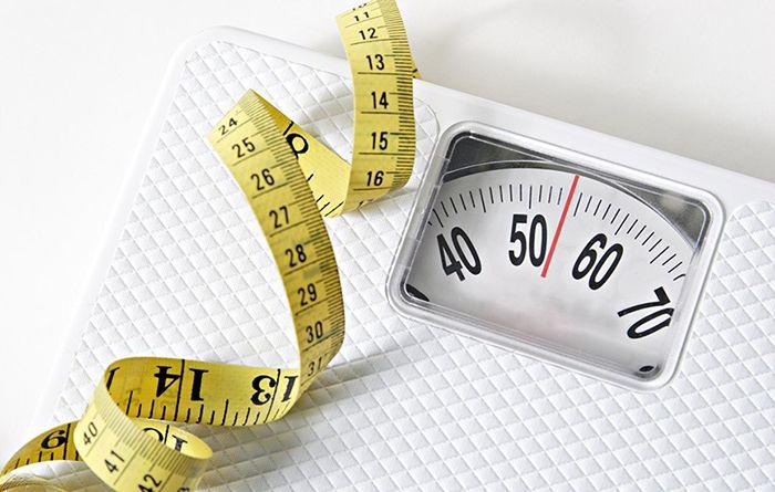지방섭취가 비만의 원인이 될까?