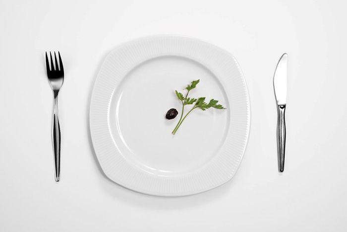 식단조절을 해도 왜 살이 잘 안 빠질까?