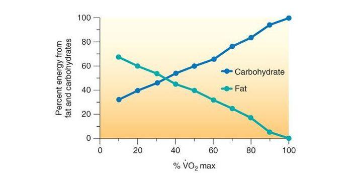 다이어트할 때 걷기와 달리기 어떤 게 더 효과적일까?
