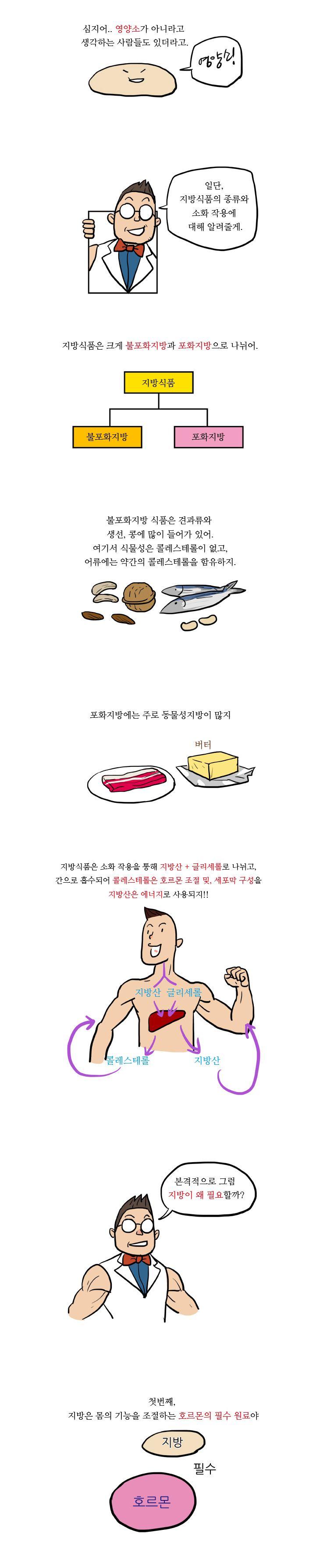 13화, 우리가 지방을 섭취해야 하는 이유!