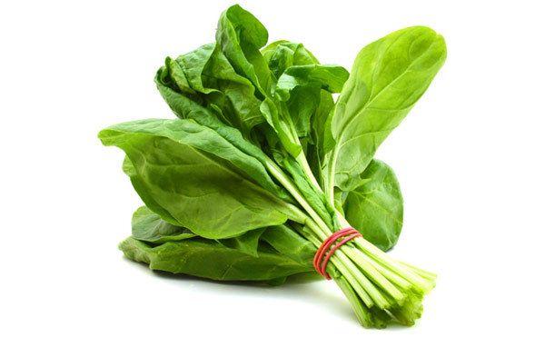 당신의 모발건강을 돕는 식품 7가지!