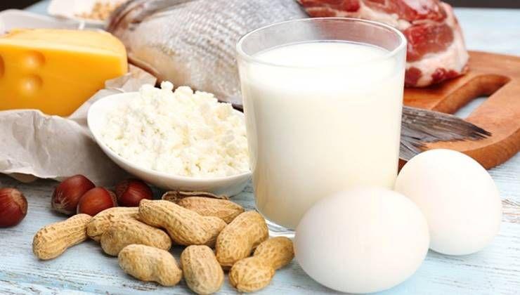 탄수화물은 적게, 지방은 많이 먹어라?