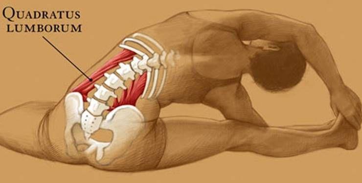 허리 아플때 풀어줘야 하는 근육 `요방형근`!