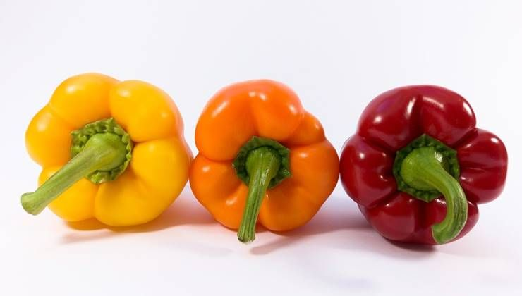 비타민C 함량 높은 음식 6가지!