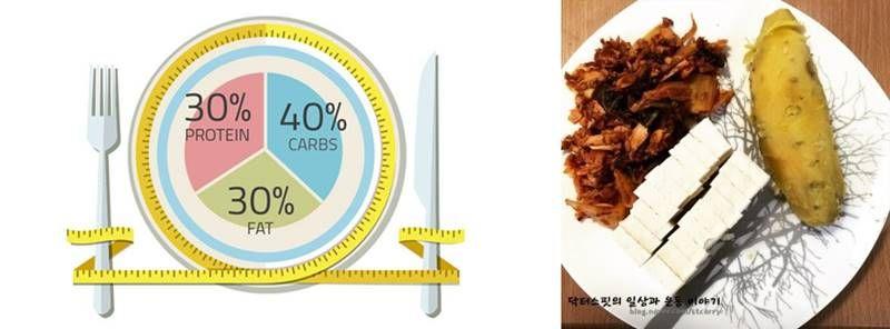 다이어트 식단, 탄단지 균형을 잡아라!