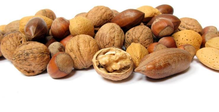 몸에 좋은 최고의 단백질 식품 7가지!