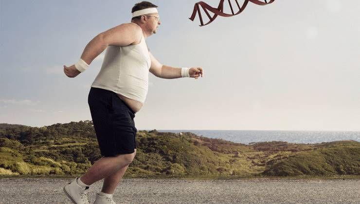 비만, 유전자 탓일까?