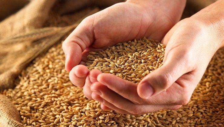 다이어트 지원군이 되어줄 곡물은?