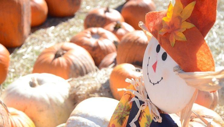 가을 다이어트, 즐기면서 할까요?