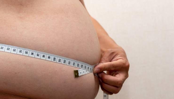 비만 유발하는 뚱보균, 진짜 있을까?