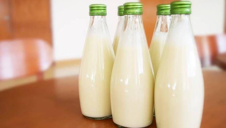 빈속에 우유는 독이다?