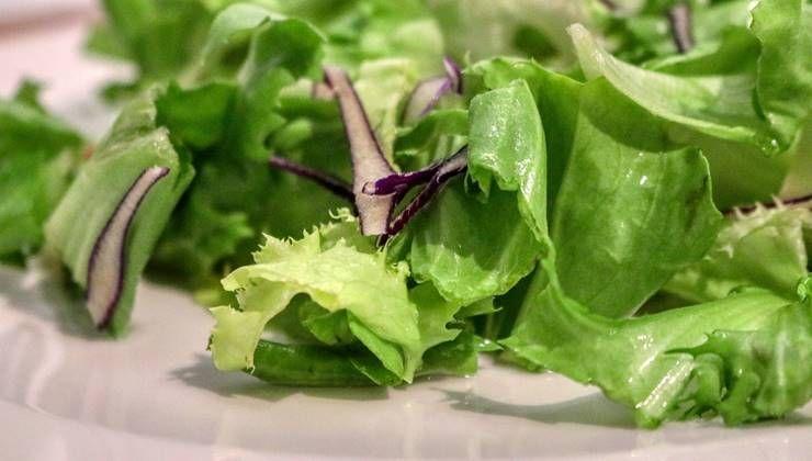 건강하게 채식하는 4가지 노하우!