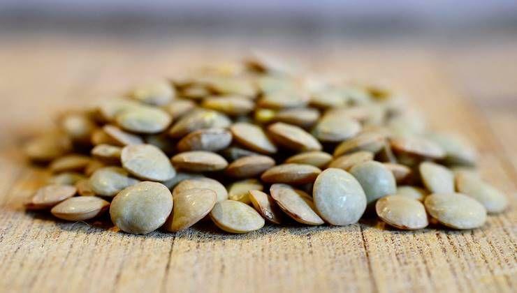콩, 건강 돕는 효자 식품이다?!
