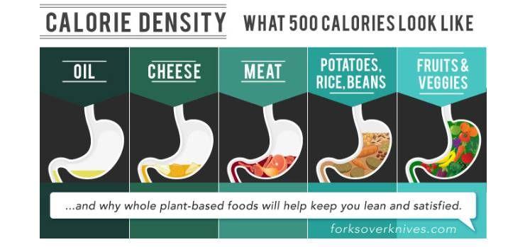 다이어트 하지 않고, 건강하게 살려면?
