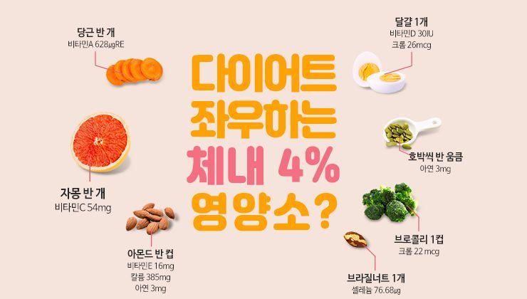 다이어트 좌우하는 체내 4% 영양소는?!