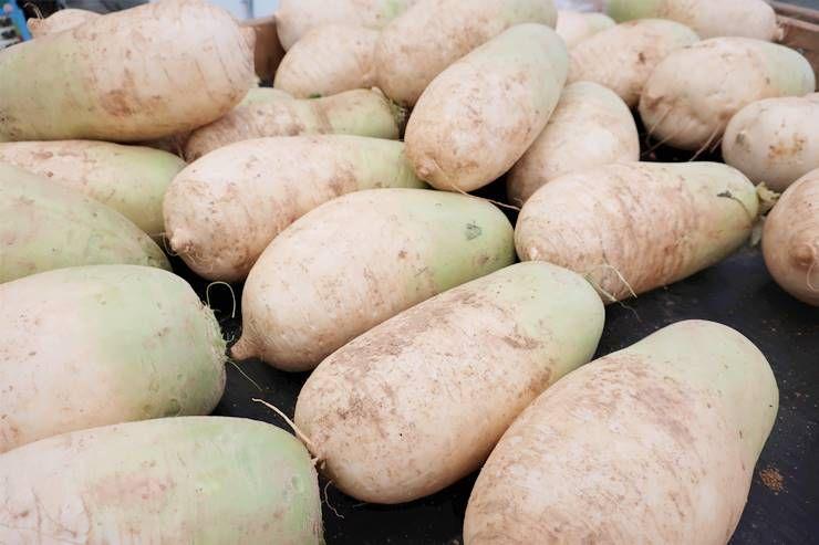 겨울철, 이 `채소`먹고, `면역력` 높여요!