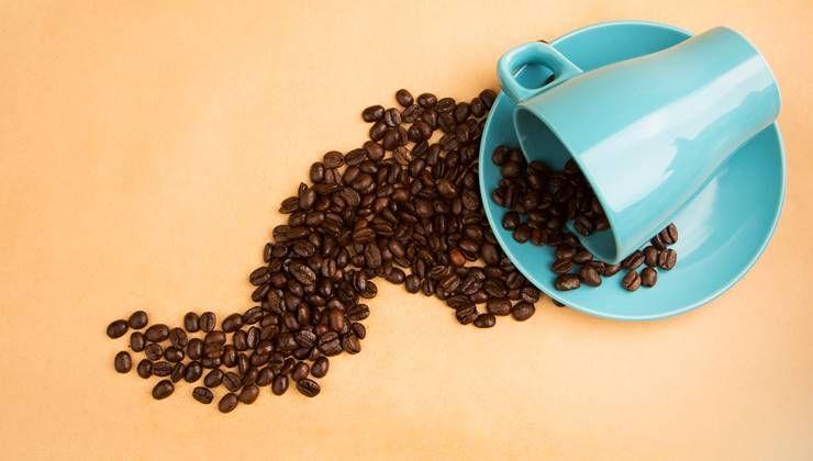 진짜 피곤한 날은 커피가 독이 된다고?!