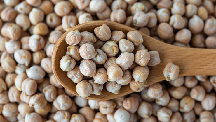 다이어터 필수영양소 `단백질` 함량 가장 높은 콩은?