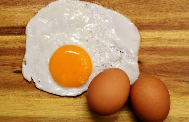 단백질 많이 든 음식들, 함유량 얼마나 될까?