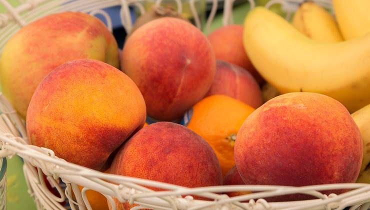 여름철 수분보충, 이 `과일`로 하세요!
