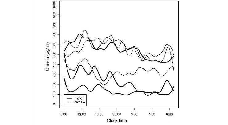 배고픔을 증가시키는 '호르몬'도 있다?