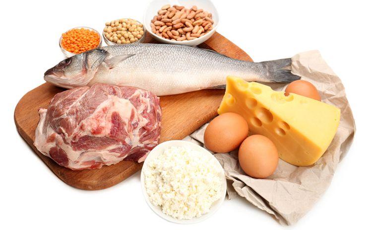 다이어터들이 꼭 알아야할 `식품별 단백질 함량`