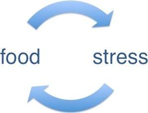 당신이 스트레스를 받을수록 살찌는 이유는?